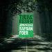 Cover Jonathan Safran Foer: Tiere essen. Foto: KiWi